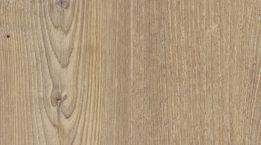 Acardian Soya Pine
