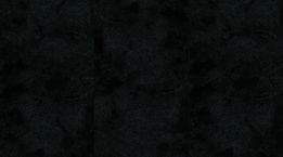 Trendtime 4 Painted black Steinstruktur